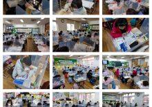 [애보박물관] 고잔초 1, 2학년