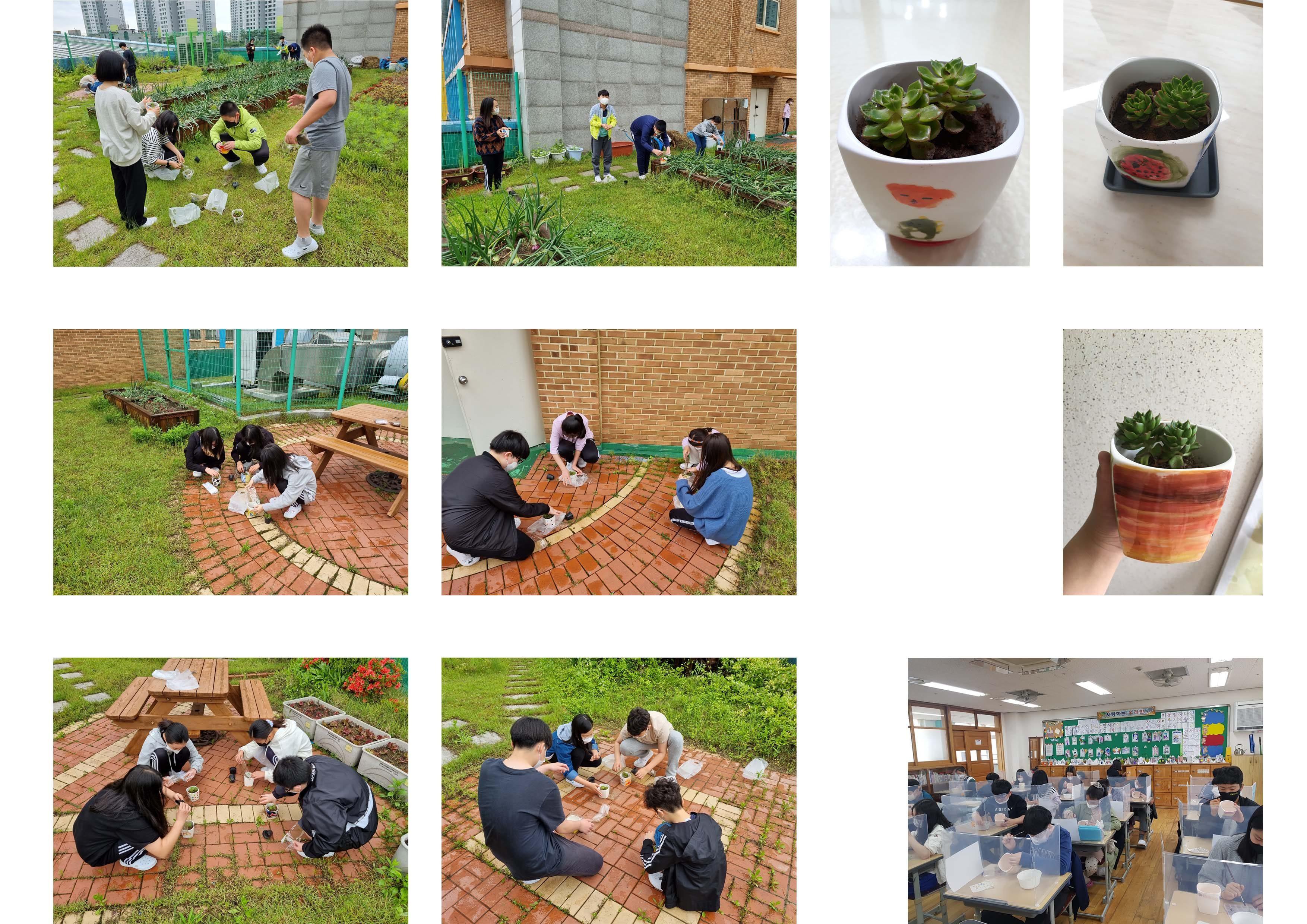 고잔초-6학년-.jpg